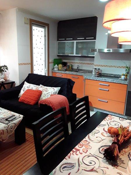 Beautiful apt in Orense & Wifi, holiday rental in Cenlle