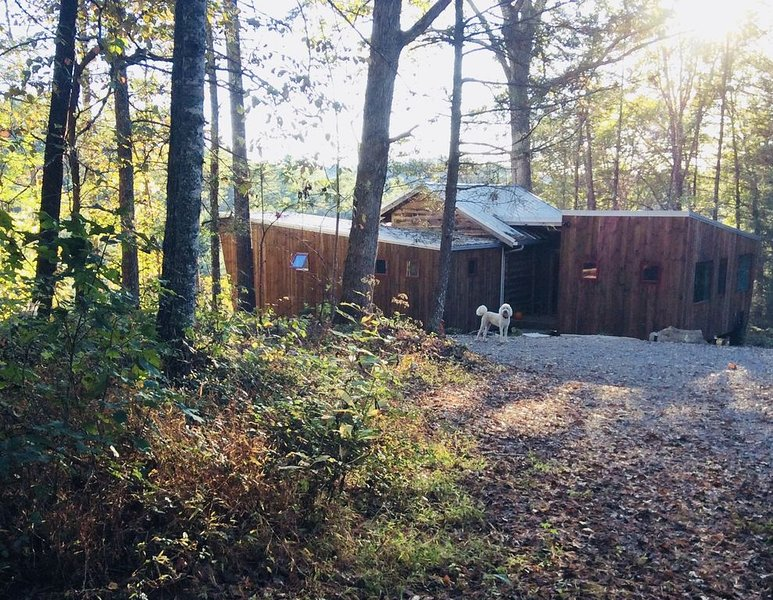 Peaceful mountain modern retreat cottage near Asheville, river view and access, Ferienwohnung in Mars Hill