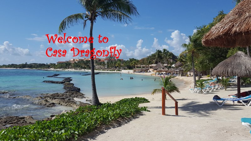 Welcome to Casa Dragonfly on Fatima Bay in Puerto Aventuras