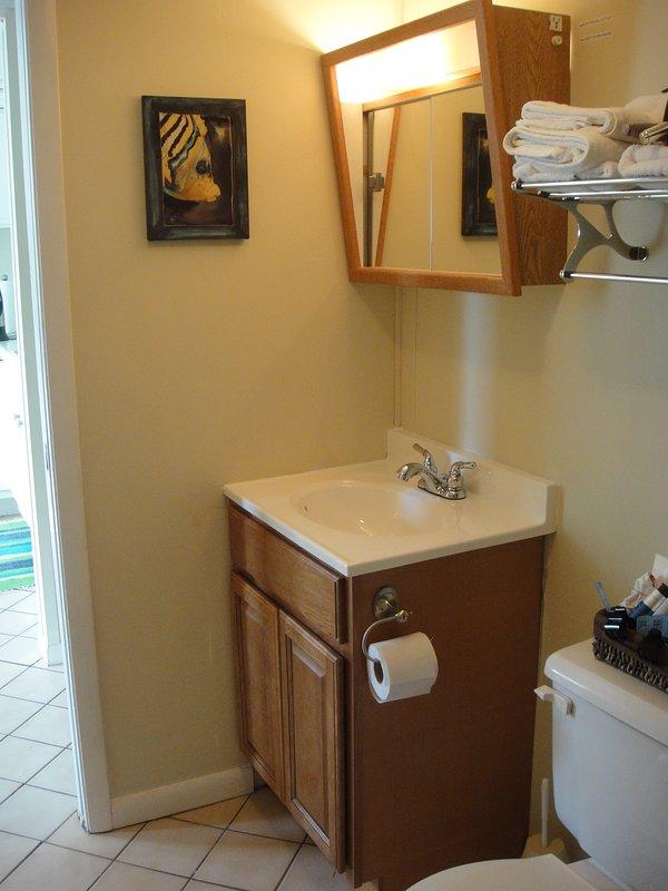 Salle de bain principale au sol (avec baignoire et douche)