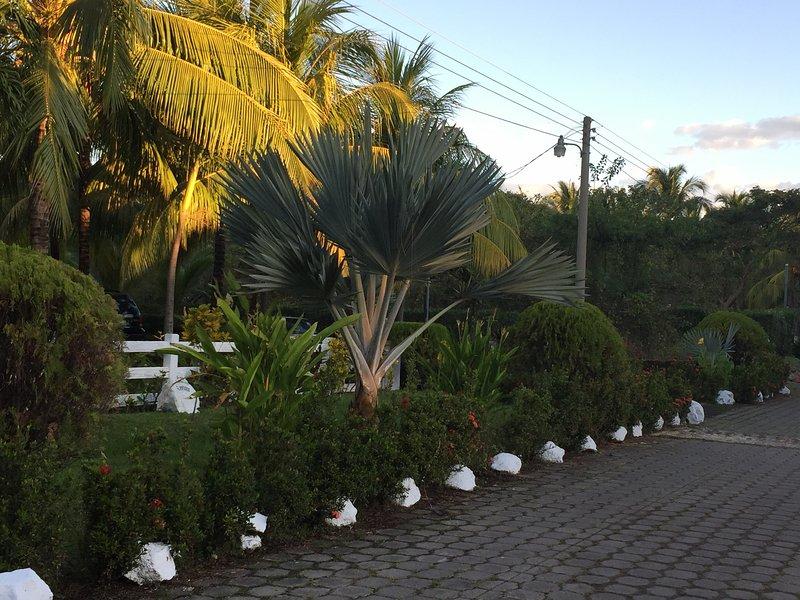 Elly's Guesthouse, Ferienwohnung in Barra de Santiago