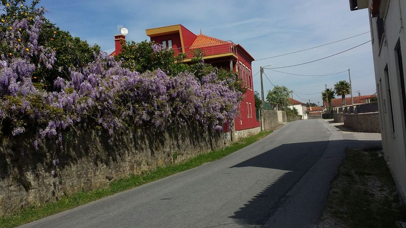 De villa van de weg