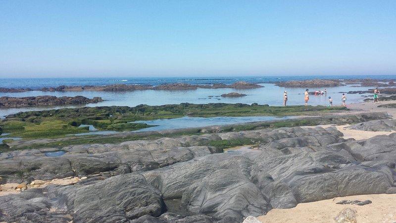 Lagunes aan het strand; geweldig voor kinderen