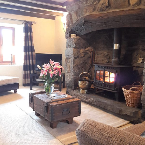 Introductory offer: Character cottage in Snowdonia, vacation rental in Bala