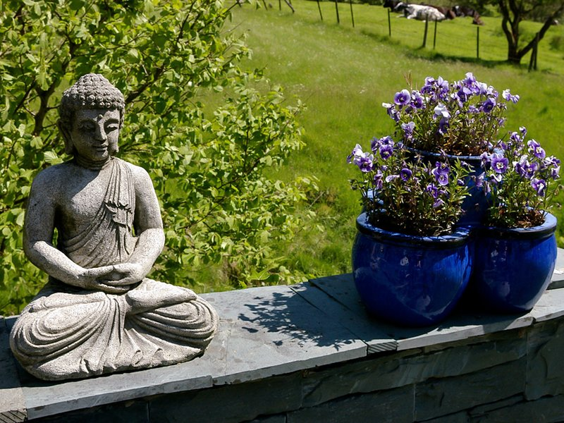 Enjoy the peace and tranquility of the garden