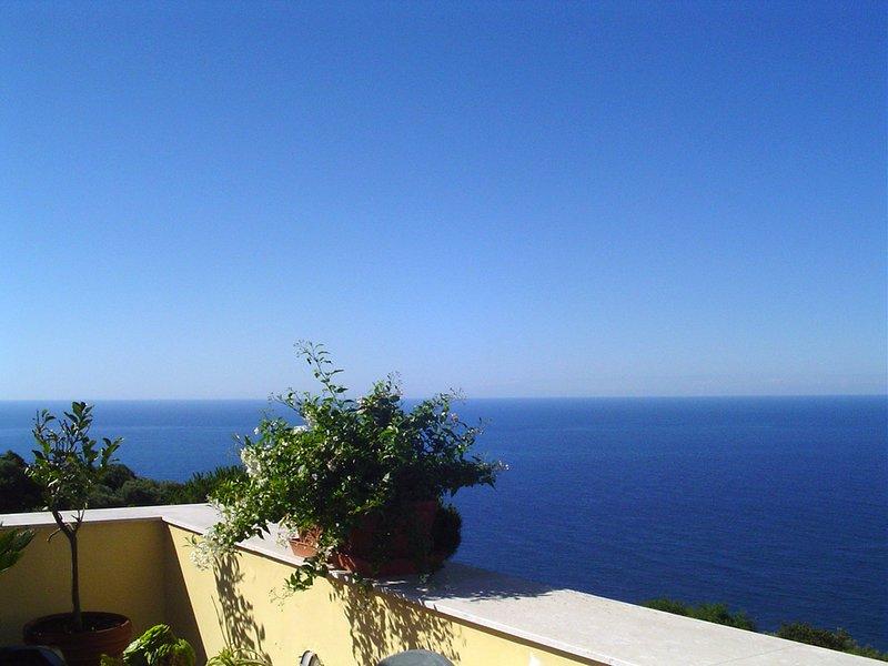Splendida vista dalla terrazza principale