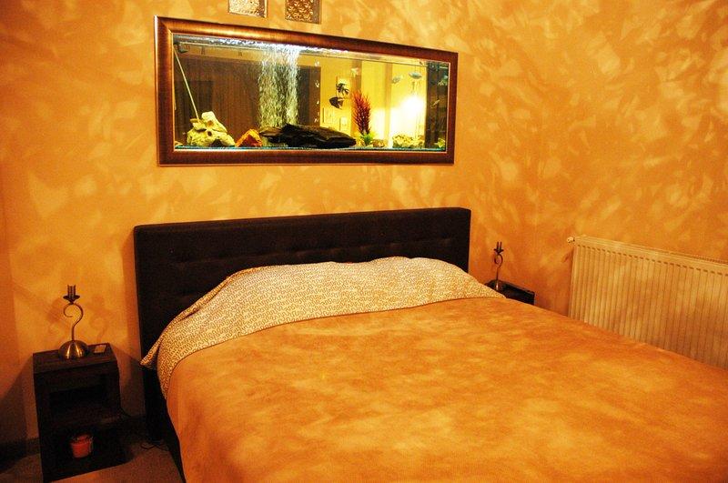 Classic Apartment, holiday rental in Sanpetru