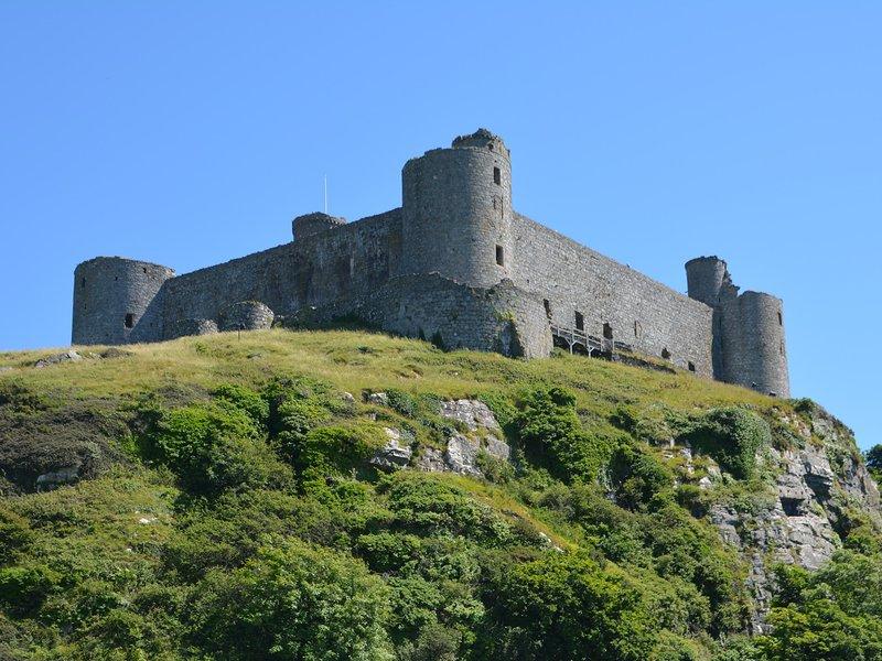 Prenez une excursion d'une journée pour visiter Harlech Castle