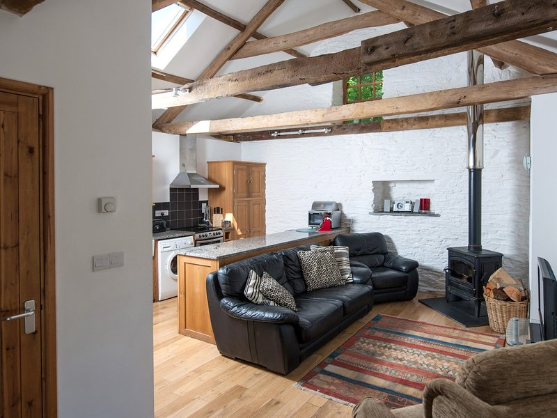 Cosy lounge area with wood burner