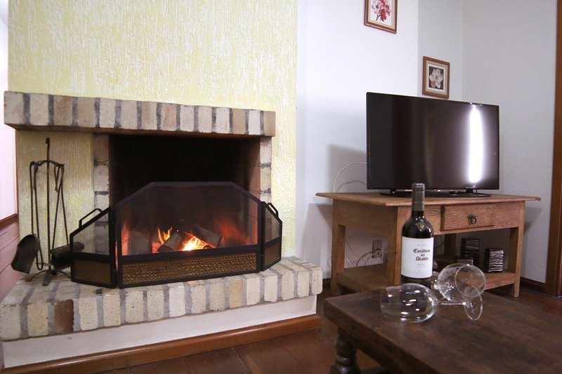 Living room with fireplace, Wi-Fi and TV