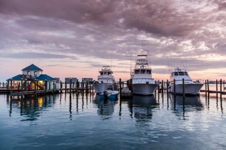 Sportfishing yachts in marina - book a charter!
