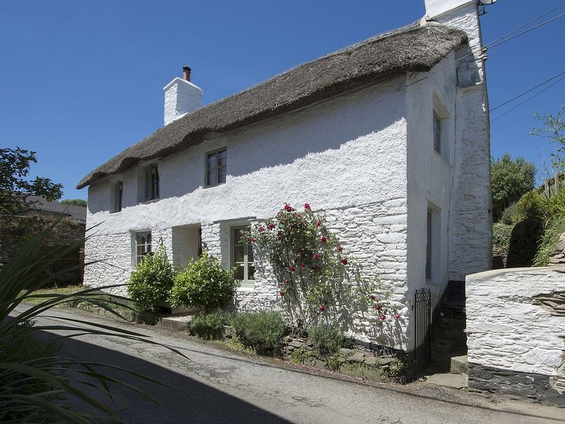 THE COTTAGE, stylish, thatched, Grade II listed cottage with wood burning – semesterbostad i Loddiswell