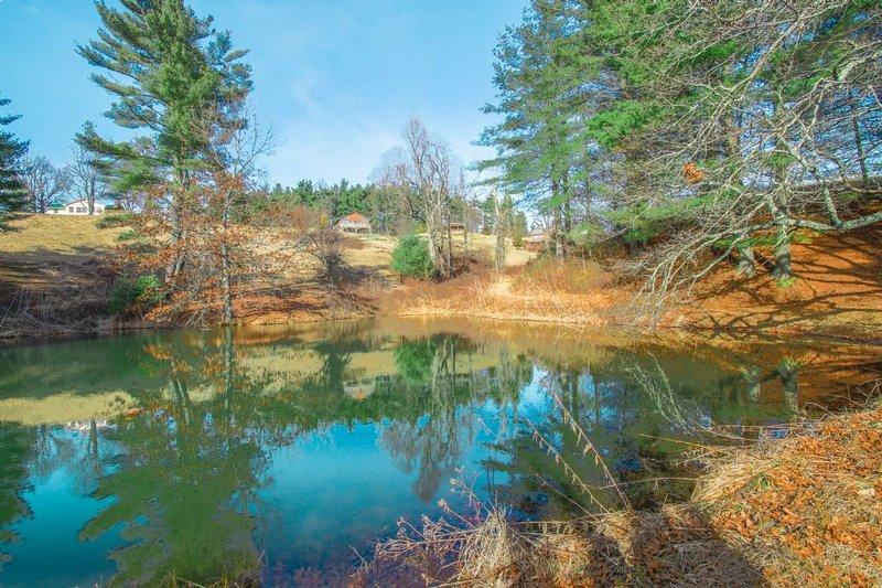 Common Pond Area
