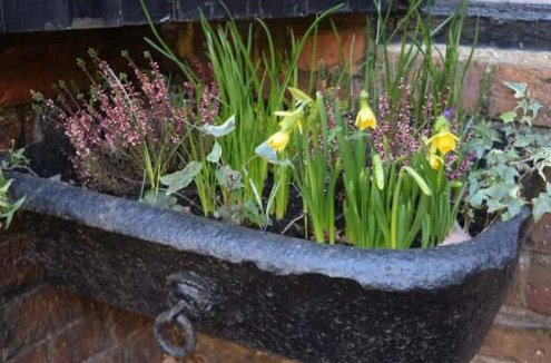 Stables window box from original drinking trough