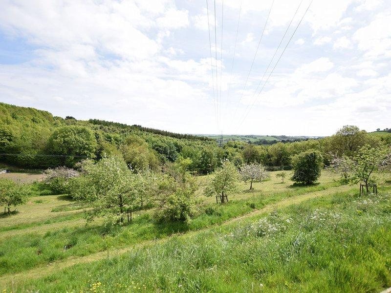 Vista sobre os jardins compartilhados e bosques comunitários locais