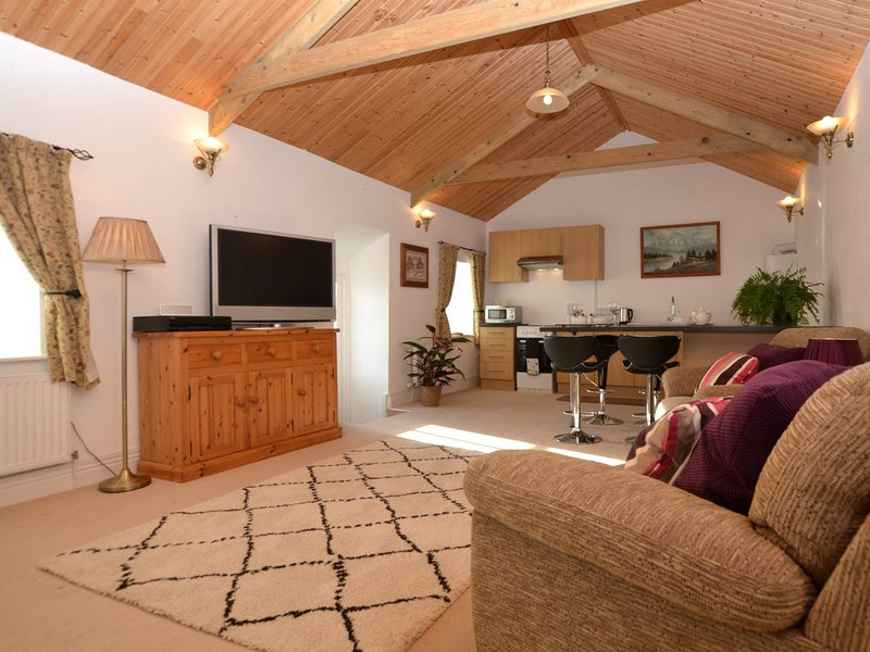 Spacious open-plan lounge/kitchen/diner