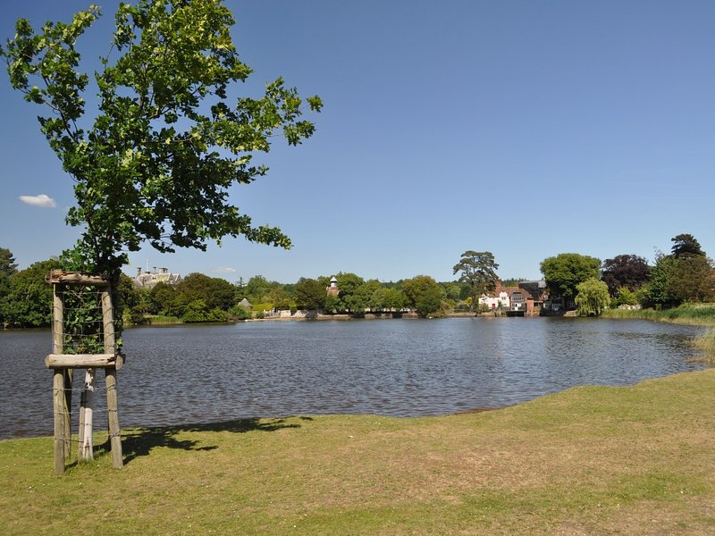 Enjoy the views of Beaulieu river