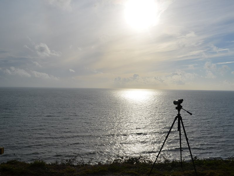 Evening over the horizon