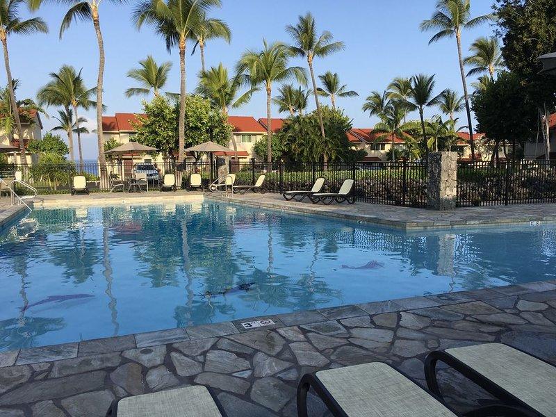 Hermosa piscina grande