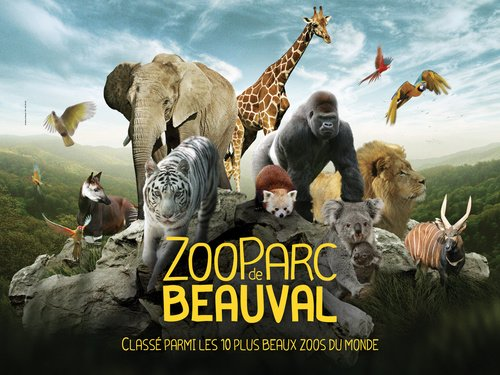 Famous Beauval Zoo!