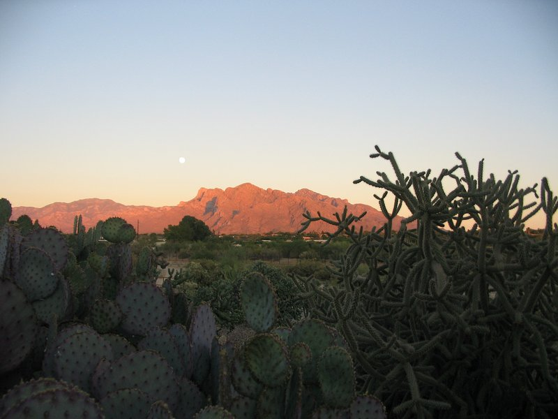While sipping on your beverage, watch that spectacular sunset over the Catalina mountains!