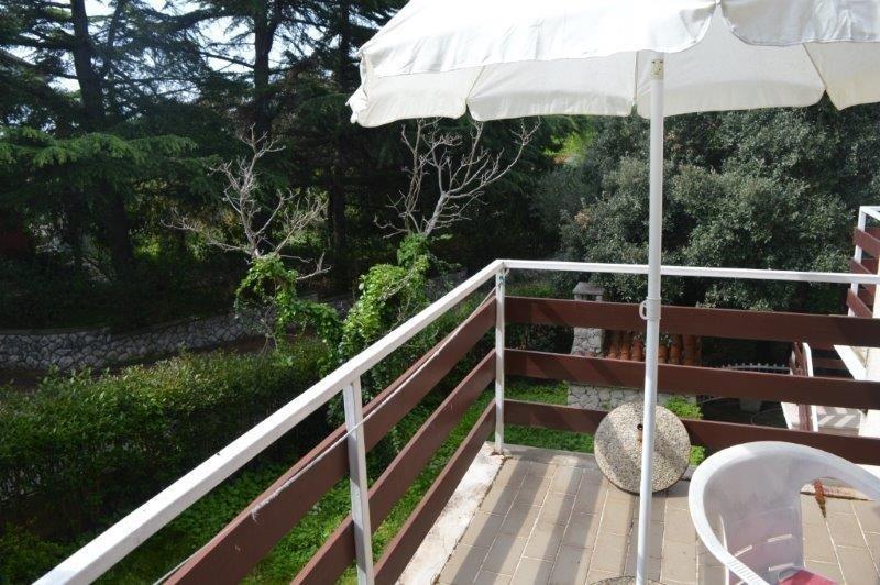 Maja  - affordable with parking: A4-Cleopatra(2+2) - Biograd, holiday rental in Biograd na Moru