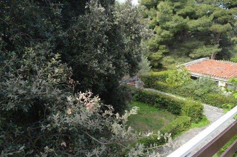 A3-Pandora(2+2): garden