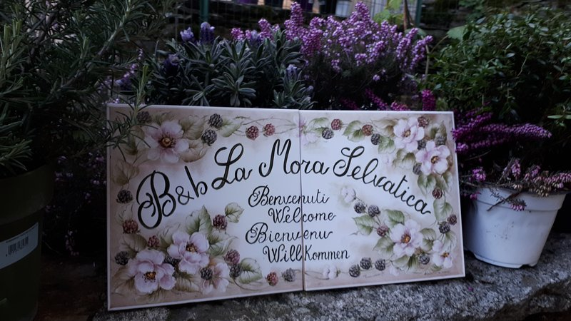 BED AND BREAKFAST 'LA MORA SELAVATICA', vacation rental in Province of Verbano-Cusio-Ossola