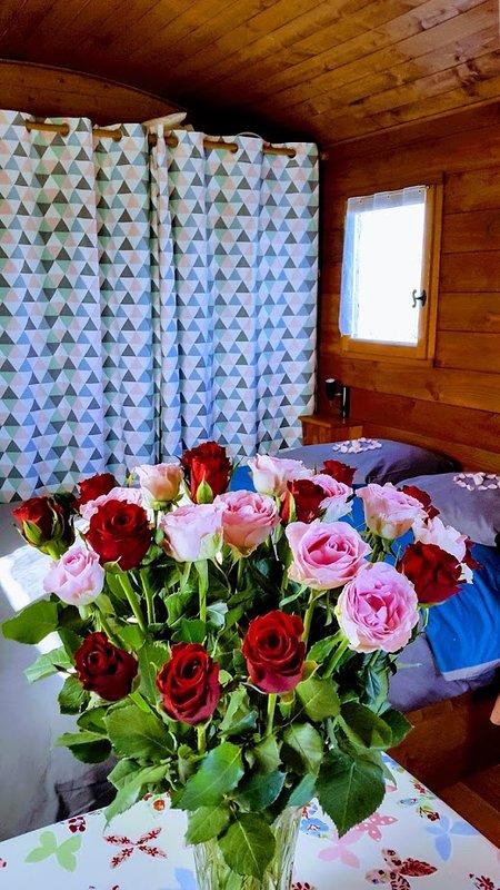 the valentine to Jonzac Roses