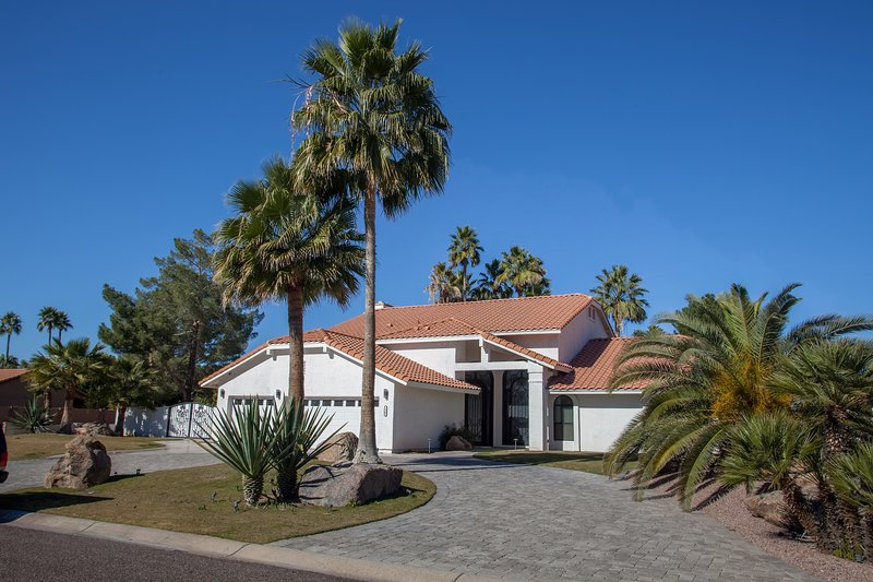 apelación acera bella durante el día, así, enorme calzada, césped artificial y hermosas palmeras.