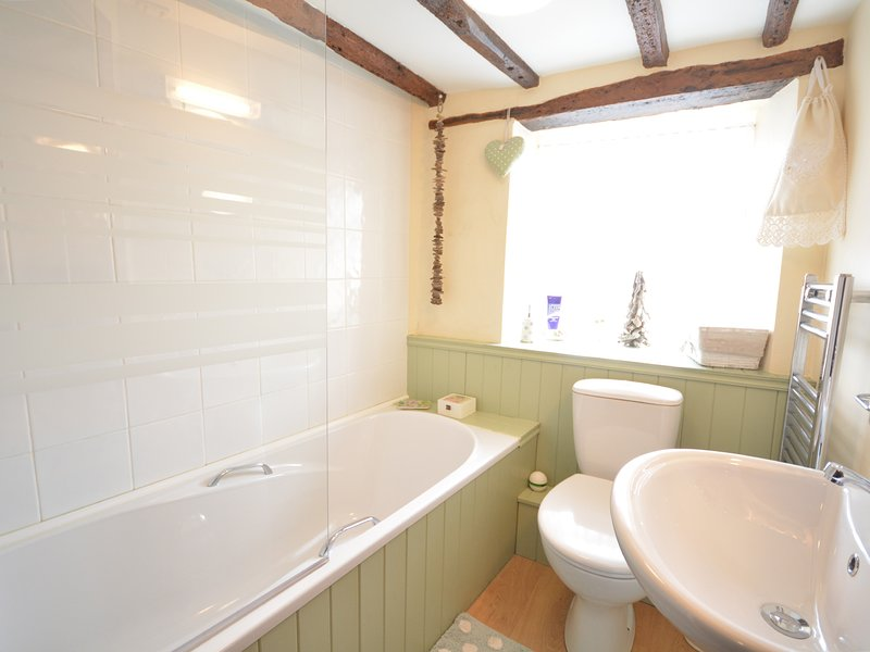 Downstairs family bathroom