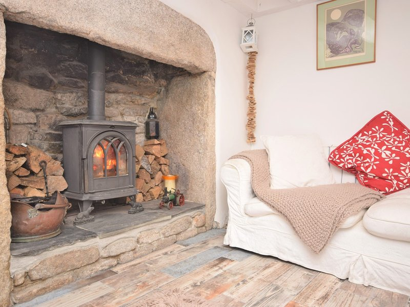 Relax in front of the wood burner