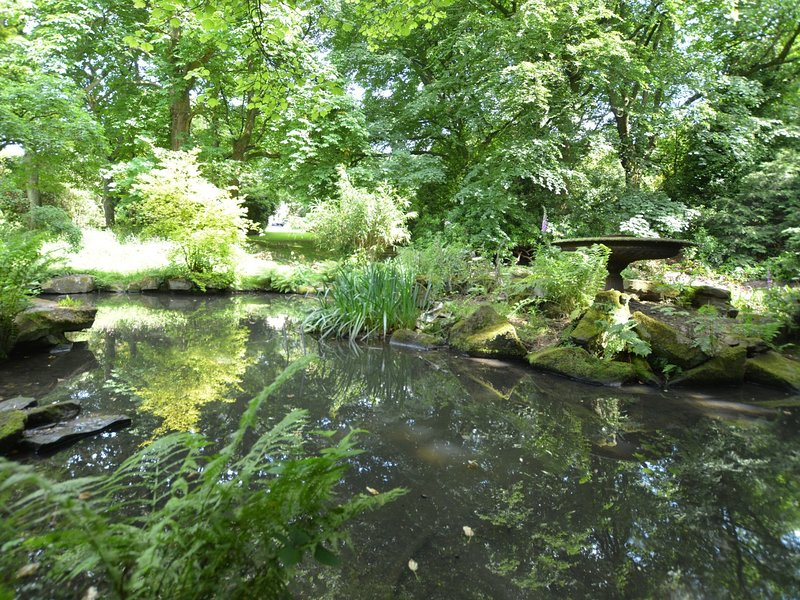 One of the ponds in the grounds