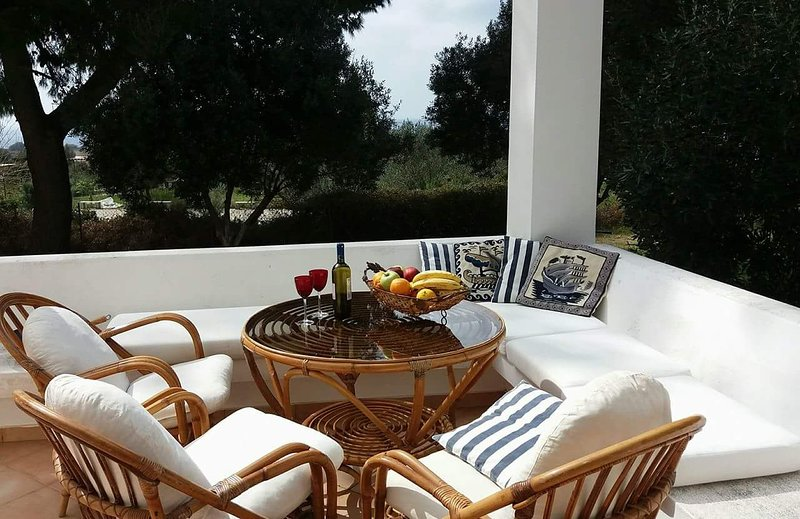 Villa Dionisia Kefalonia, vacation rental in Svoronata