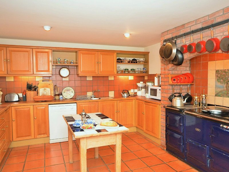 Large family kitchen with Aga