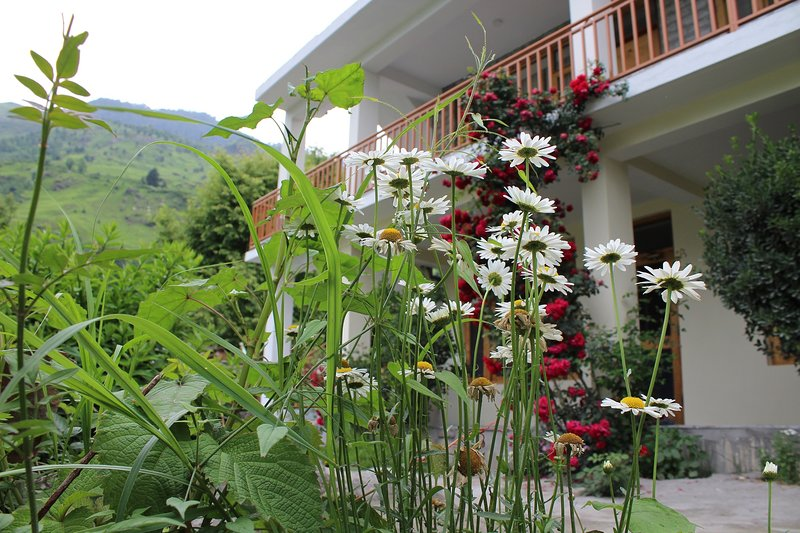 Black Rock Home Stay, vacation rental in Burua