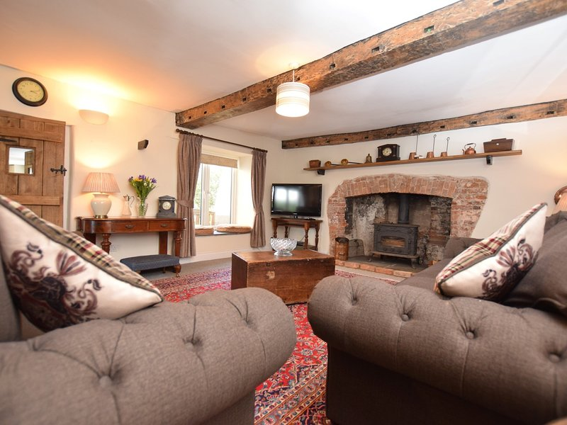 Grand salon avec poêle à bois