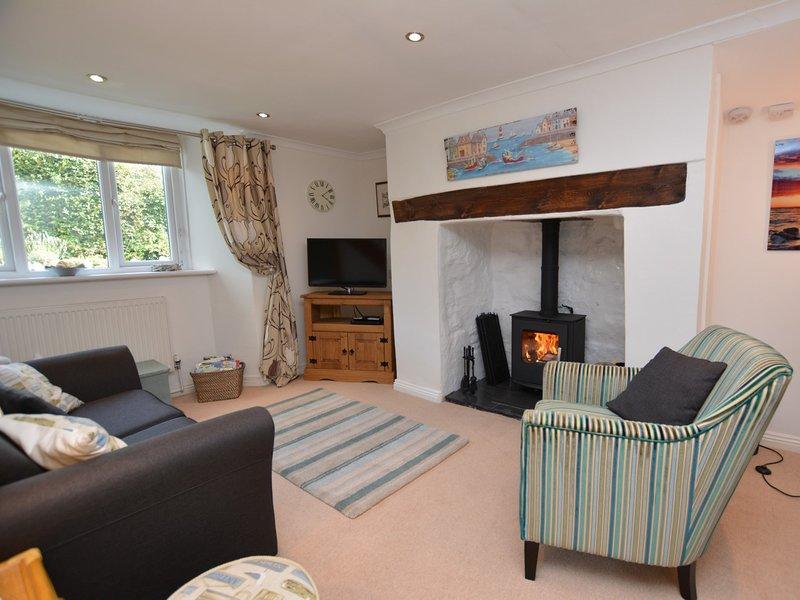 Cottage style lounge with wood burner
