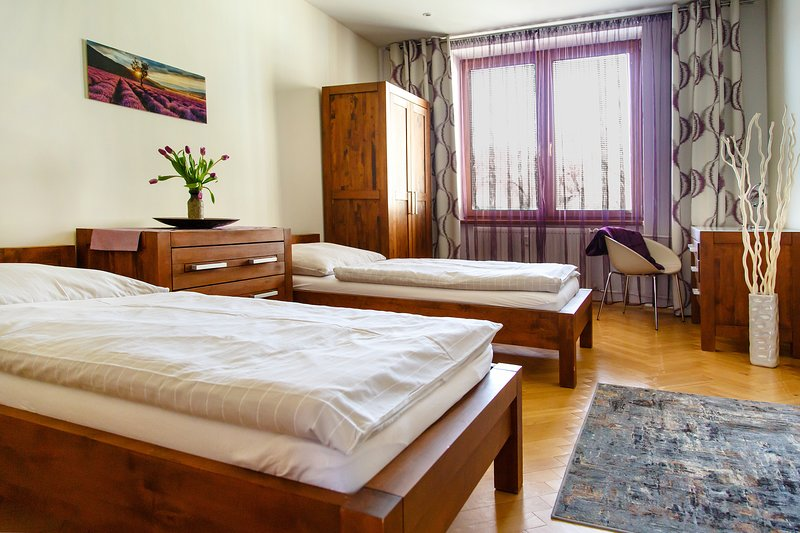 AWESOME 2BR KOSICE OLD CITY DREAM HOME !!!, vakantiewoning in Slowakije