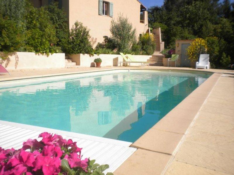 Amazing villa with swimming-pool, location de vacances à Pourrieres