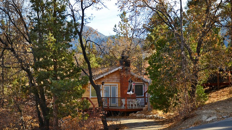 Romantic cabin in woodsy area, 2 miles from skiing, vacation rental in Big Bear City