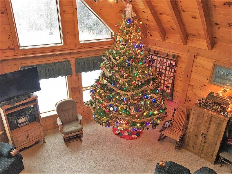 It's an 11 foot tree.