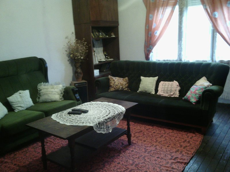 Bulgarian house Danube - entire vacation home, holiday rental in Vidin Province