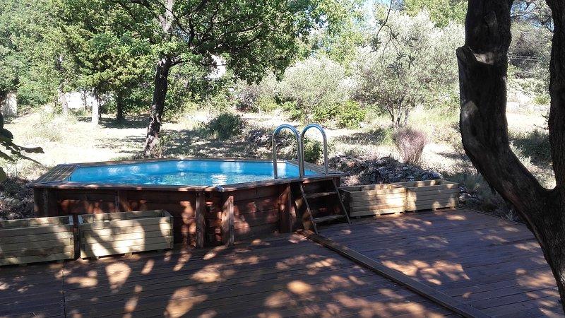 La vostra piscina in legno con la sua spiaggia sotto il tricentenario ulivo tra sole e ombra così piacevole.