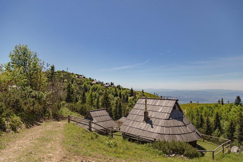 Chalet Zlatica - Velika planina, holiday rental in Senturska Gora