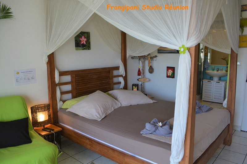 Studio 28m², confortable et charmant avec terrasse 8m², à proximité de la plage., holiday rental in La Saline les Bains