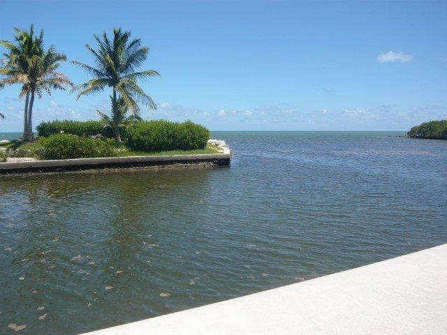Boat ramp area