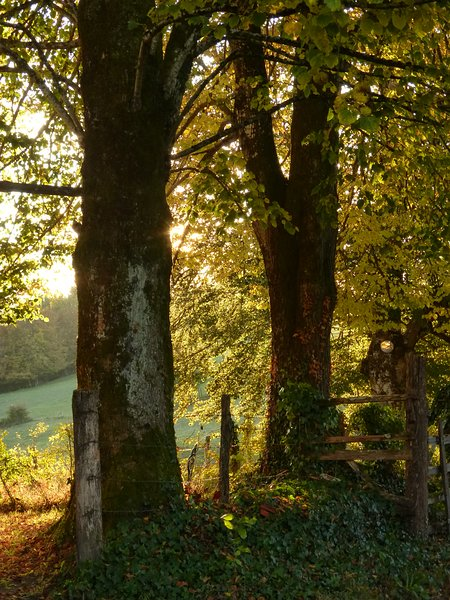 Year-round beauty in the Correze