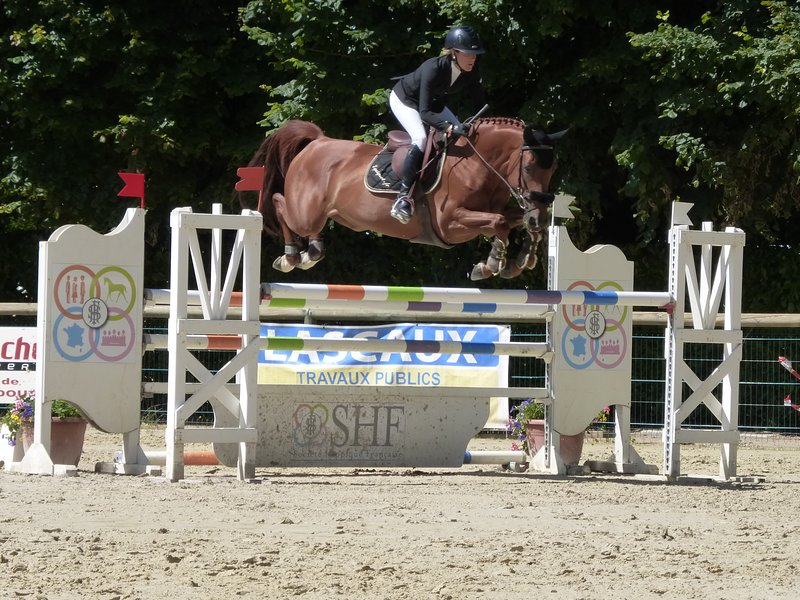 A variety of equestrian events to international level are held from March onwards. Free to watch!