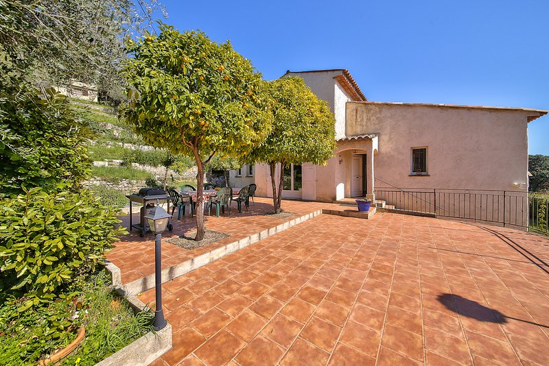 your terrace shaded by orange trees with barbecue